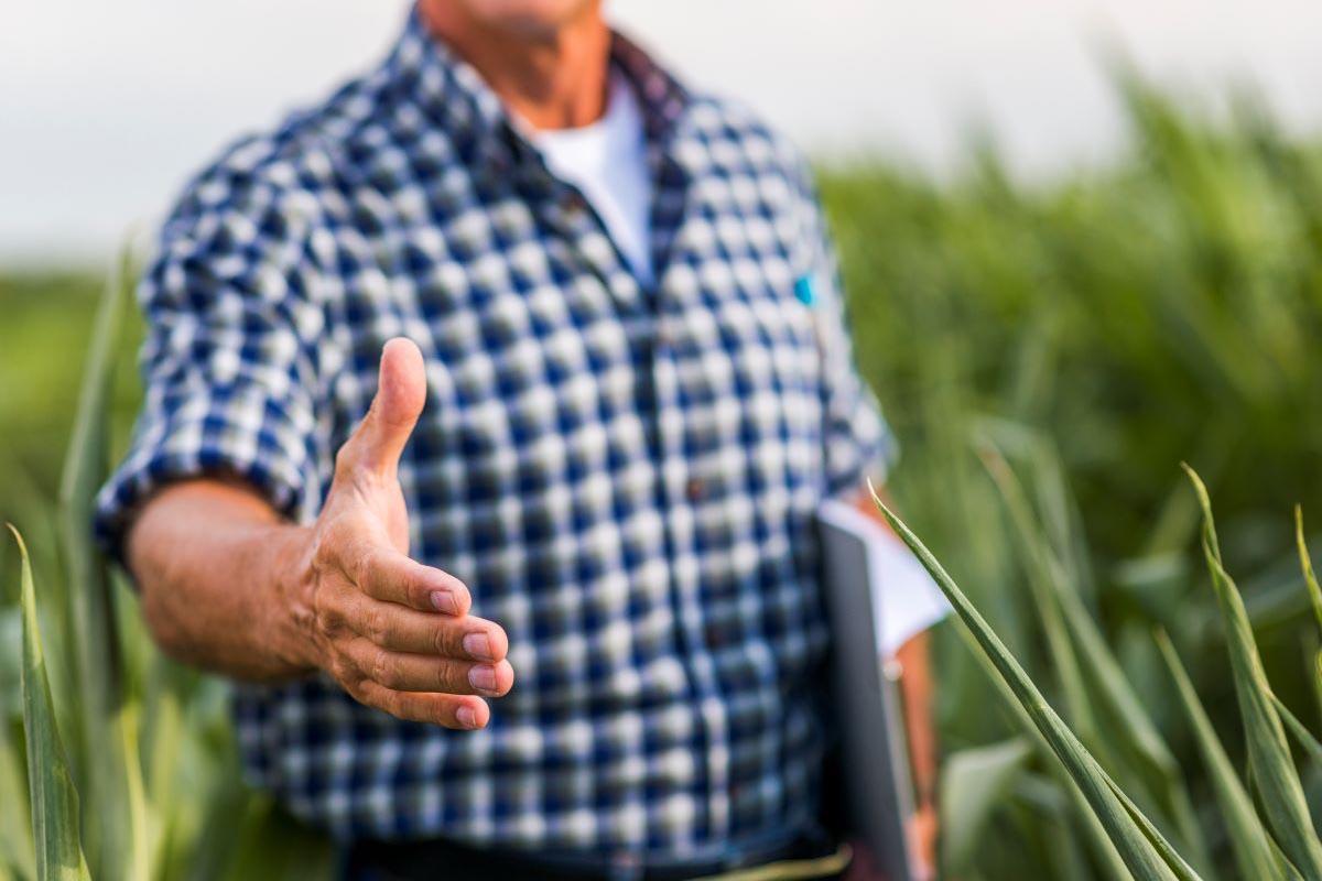 Custeio antecipado pode favorecer produtor rural em negociações